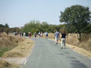 The road to a Carmelite convent in Central Spain